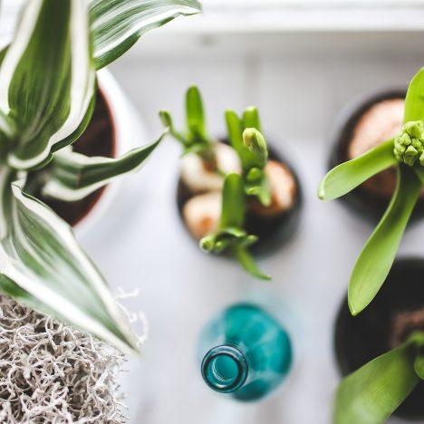 Réduire sa consommation d'eau – Quelques astuces